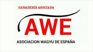awe-asociado